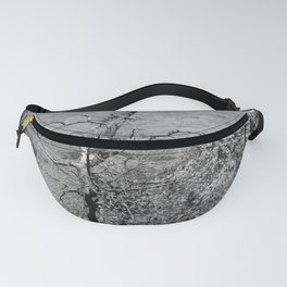 Black & White Tree Fanny Pack