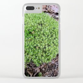 The Fairy's Futon Clear iPhone Case