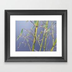 Bamboo leggings Framed Art Print