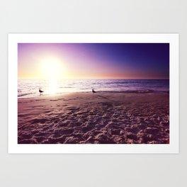 The Polar Beach Art Print