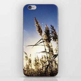 Bulrush&Sun iPhone Skin