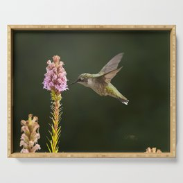 Hummingbird and flower II Serving Tray