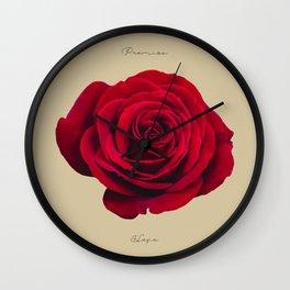 Tulip_Flora_Promise Rose Wall Clock
