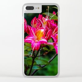 Pink flowers/ Clear iPhone Case