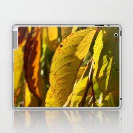 Yellow Leaves Laptop & iPad Skin
