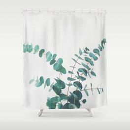 Eucalyptus II Shower Curtain