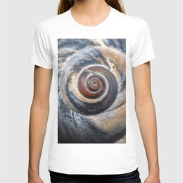 Blue and Gold spiral seashell T-shirt