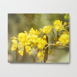 Popcorn Flower Bokeh Delight Variation Metal Print