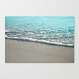 turquoise nature Canvas Print