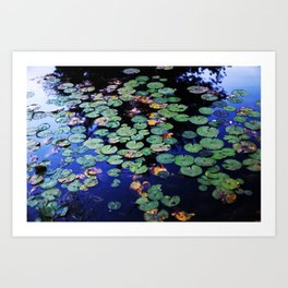 paramecium pond Art Print