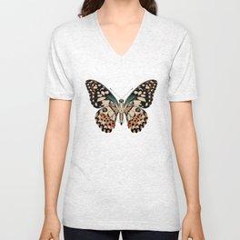 Papilio demoleus Unisex V-Neck