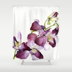 Radiant Orchids: Magenta Dendrobiums Shower Curtain