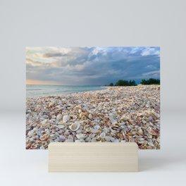 Nokomis Shells Mini Art Print