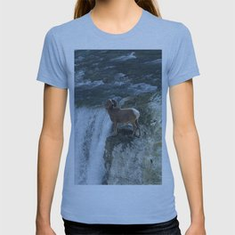 Big Horn Sheep & Rocky Mountain Waterfall T-shirt
