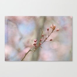 Simple Pink Floral Canvas Print