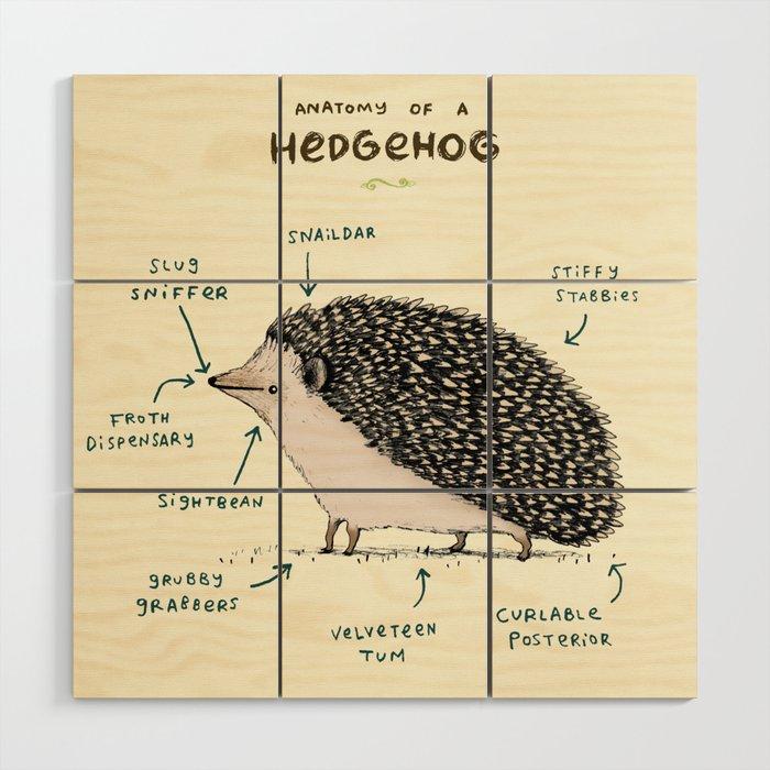 Anatomy Of A Hedgehog Wood Wall Art By Sophiecorrigan Society6
