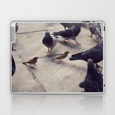I envy birds Laptop & iPad Skin