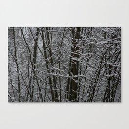 Snowy Day 2 Canvas Print