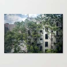 Day One, Through A Window Canvas Print