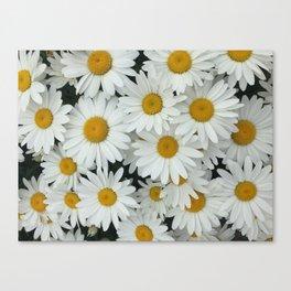 Daisy be me Canvas Print