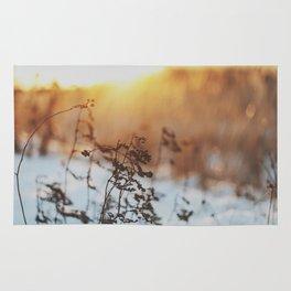 winterlight Rug