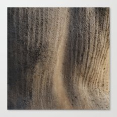 Weathered texture Canvas Print
