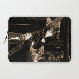 Back street Cats Laptop Sleeve