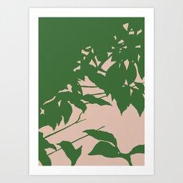 Shadowplay Art Print