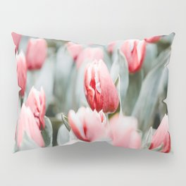 Pink Tulip Bulbs In A Field Green Leaves Pillow Sham