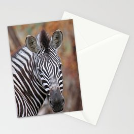 Back and forth - Africa wildlife Stationery Cards