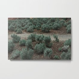 A rail in the middle of the garden Metal Print
