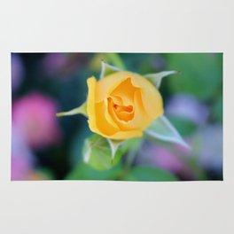 Macro Yellow Tea Rose Rug