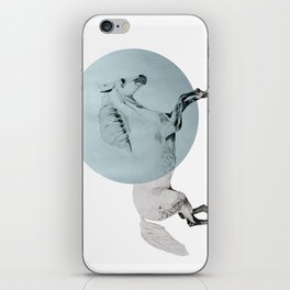 white horse iPhone Skin