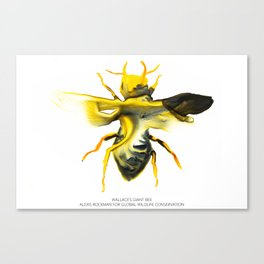 Wallace's Giant Bee Canvas Print