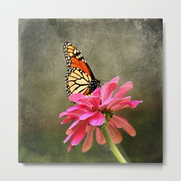 Monarch Butterfly and Pink Zinnia Metal Print