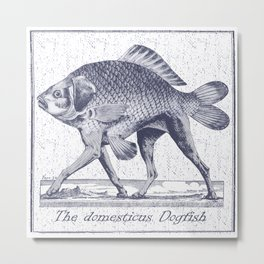 IF FISHES HAD LEGS (navy) Metal Print