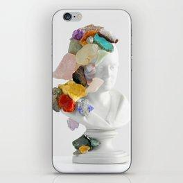Inherit The Earth iPhone Skin