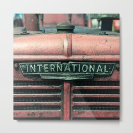 International Grille  Metal Print