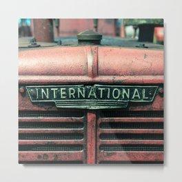 International Grille  Metal Print
