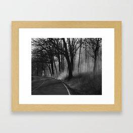 Blazing Trail Framed Art Print
