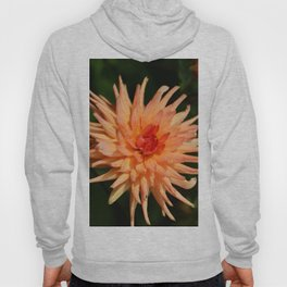 A Radiant Beauty Hoody