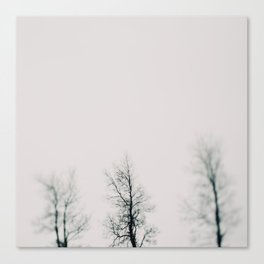 Minimal Winter #1 Canvas Print