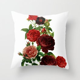 Vintage & Shabby Chic - Red Roses Throw Pillow