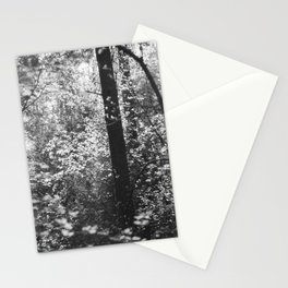 Forest Stationery Cards