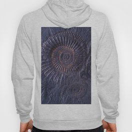 Ancient fossils Hoody