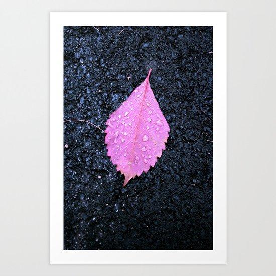 Pink on Asphalt Art Print