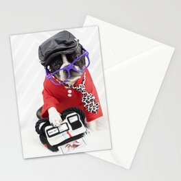 Boston Terrier Photographer Stationery Cards