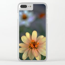 Color 134 Clear iPhone Case