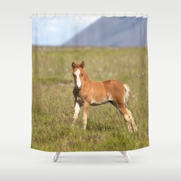 Watercolor Horse 29, Icelandic Pony, Höfn, Iceland, Ready or Not! Shower Curtain