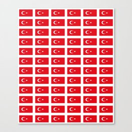 flag of turkey -turkey,Turkish,Türkiye,Turks,Kurds,ottoman,istanbul,constantinople. Canvas Print